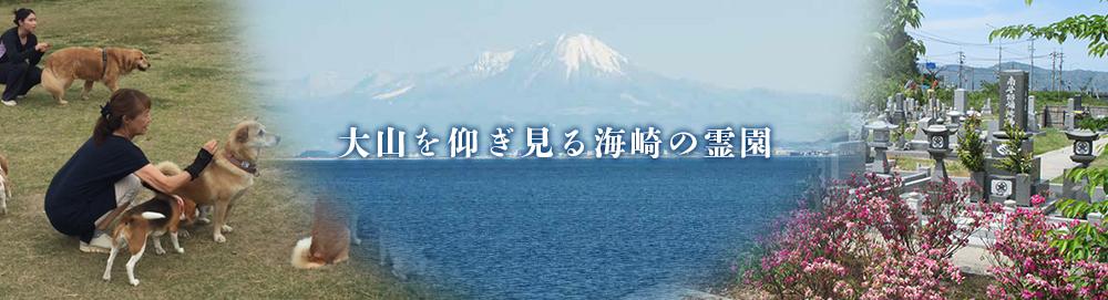 大山を仰ぎ見る海崎の霊園